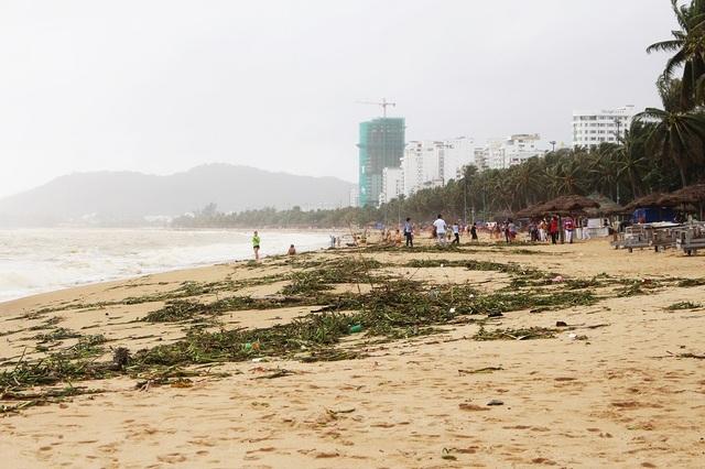 """Hàng tấn rác dạt về """"bãi biển hấp dẫn hàng đầu thế giới"""" - 2"""