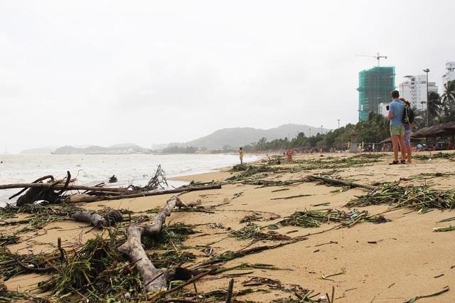 """Hàng tấn rác dạt về """"bãi biển hấp dẫn hàng đầu thế giới"""" - 5"""