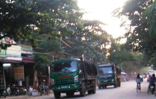 Tuyến đường qua thị trấn Kim Tân, huyện Thạch Thành cũng có nhiều xe quá khổ, quá tải hoạt động