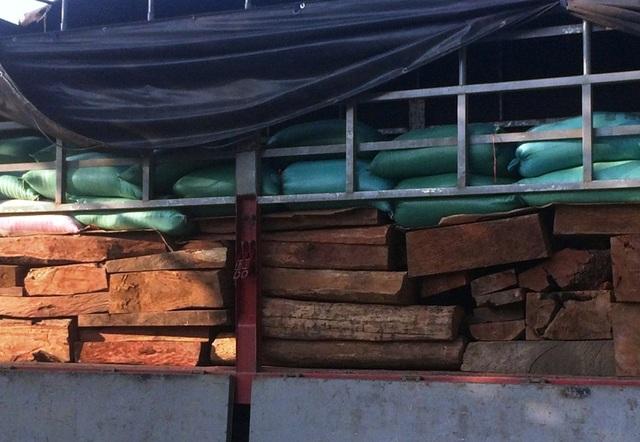 Gỗ được xếp xuống dưới thùng xe, phía trên là một lớp bao gạo phủ kín