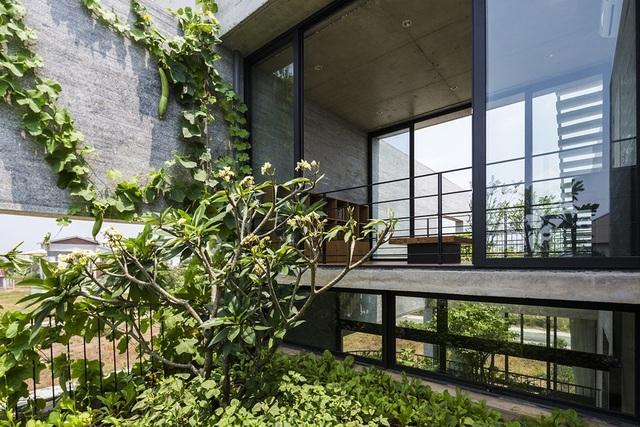 Binh House.
