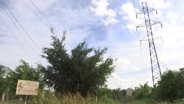 Bảng cảnh báo nguy hiểm của ngành điện lực. Nhưng chẳng hiểu sao chính quyền huyện Tân Hiệp chọn vị trí này là nơi ươm mầm tài năng trẻ.