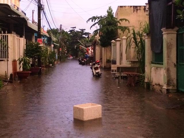 Khu dân cư Tổ 3A, phường An Bình, quận Ninh Kiều sáng nay.