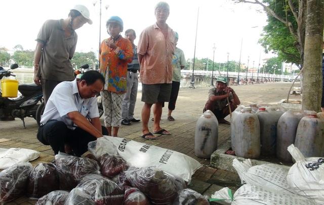 Số nội tạng bốc mùi trên xe khách biển kiểm soát 51B-032 bị ngành chức năng An Giang bắt giữ