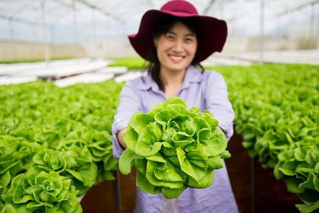 Cô ong chúa Trần Mao chuyên giải cứu nông sản ế.