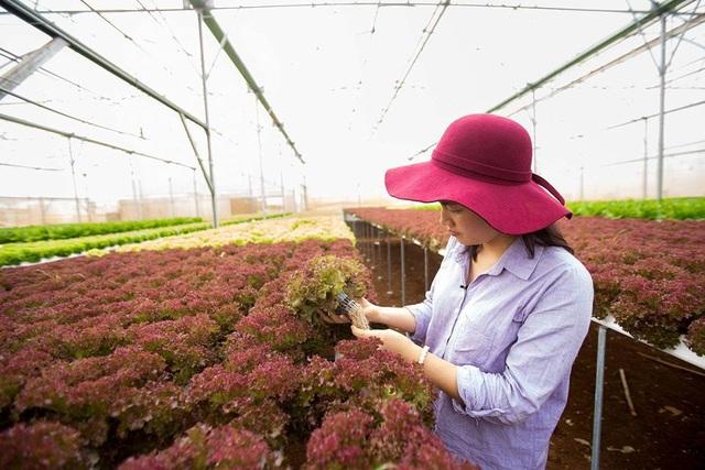 Cô gái Tây Nguyên nuôi ước mơ giải cứu nông sản ế - 2
