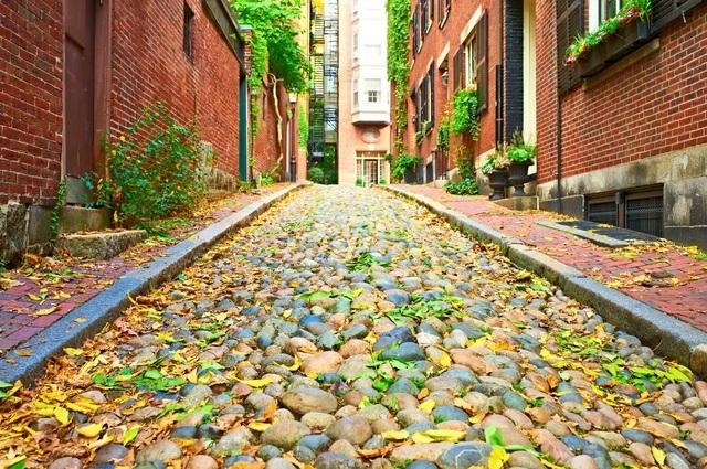Mùa thu Boston chìm trong nắng vàng dịu ngọt của một thành phố còn mang lối kiến trúc cổ kính