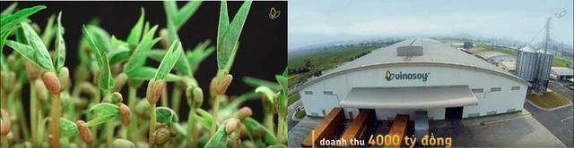 Đường đến 1 tỉ USD của đậu nành Việt - 1