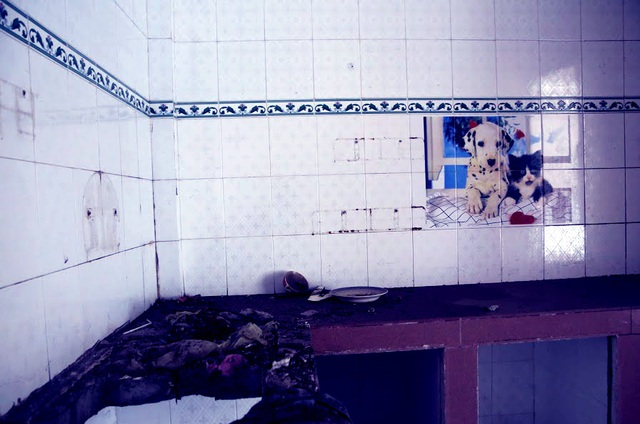 Một gian bếp còn sót lại những chiếc chén đĩa và bức tranh treo tường đầy bụi bẩn.