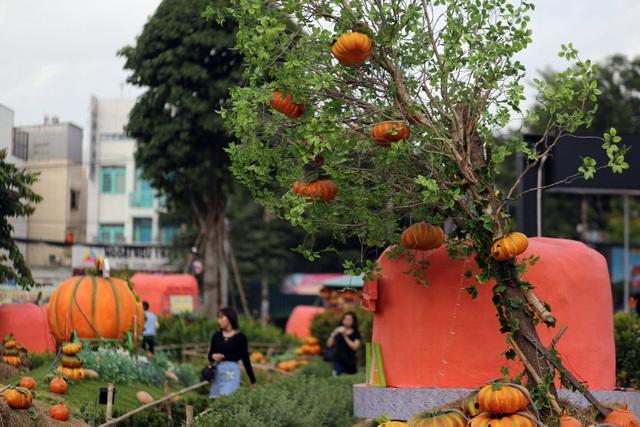 Bí ngô được biết đến là biểu tượng của lễ hội Halloween ở các nước phương Tây dịp cuối tháng 10 hàng năm.