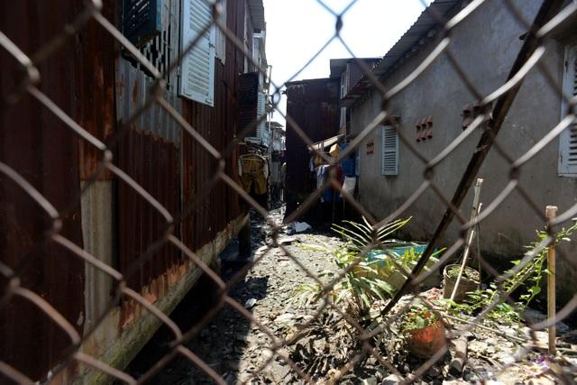 Phía sau những căn nhà là bãi chứa rác thải do các hộ dân vứt xuống.