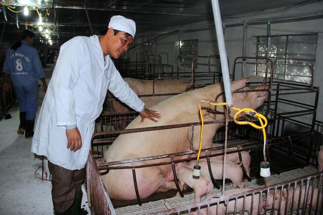 Từ tay trắng sở hữu trang trại cho thu nhập tiền tỷ - 1
