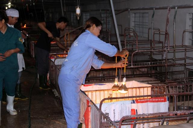 Từ tay trắng sở hữu trang trại cho thu nhập tiền tỷ - 2