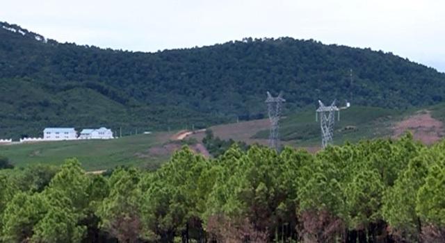 Những khu đồi bị cạo trọc, để trồng cỏ phục vụ nuôi bò được xác định là tác nhân khiến hồ chứa nước Đá Hàn cạn kiệt, ô nhiễm.