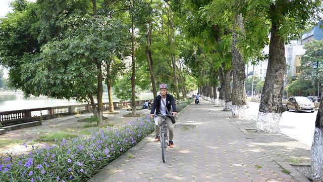 Tại vườn ươm, dự kiến cây sẽ được chăm sóc từ 6 tháng đến 1 năm. Nếu còn sống, cây sẽ lại được chuyển về trồng trên một số tuyến đường ở Hà Nội.