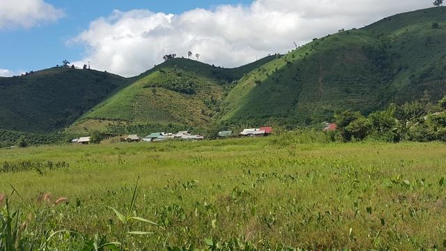 Ngôi làng của người Sán Chỉ với hơn trăm nóc nhà như lọt thỏm giữa những bụi cây lớn