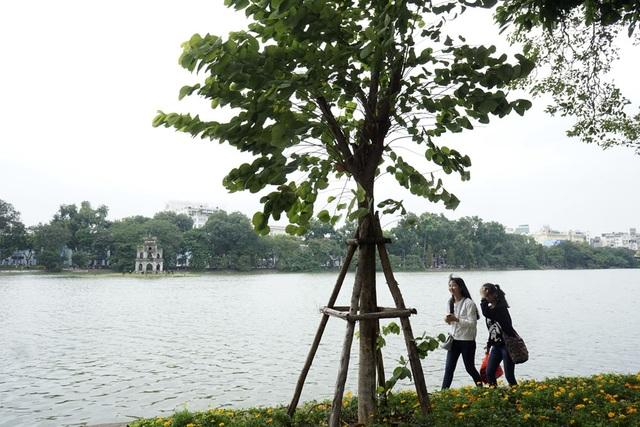 Thời tiết lạnh nhưng lượng người đổ về không gian đi bộ quanh hồ Hoàn Kiếm vẫn rất đông.