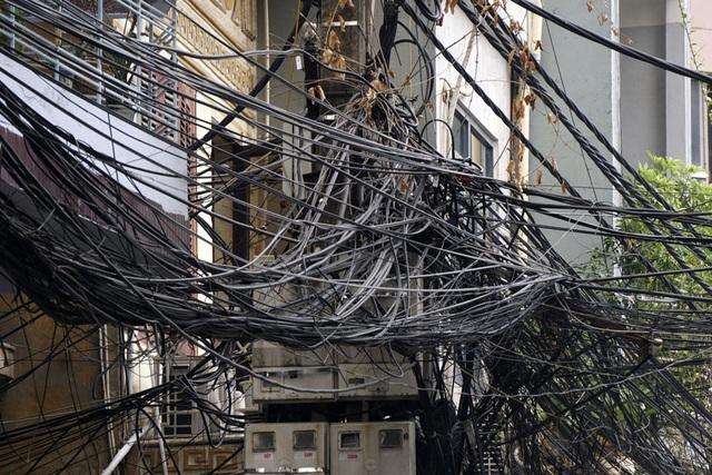 Những búi dây hàng trăm sợi được gối lên nhau chằng chịt và lộn xộn.