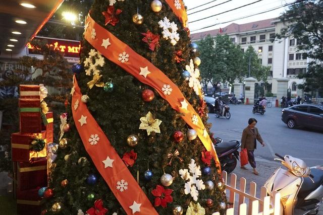 Những cây thông Noel trên đường phố.