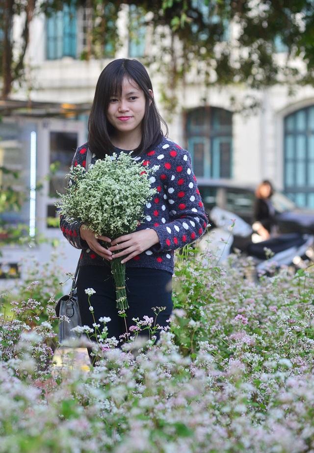 Hoa sao Hà Nội đọ sắc với hoa tam giác mạch
