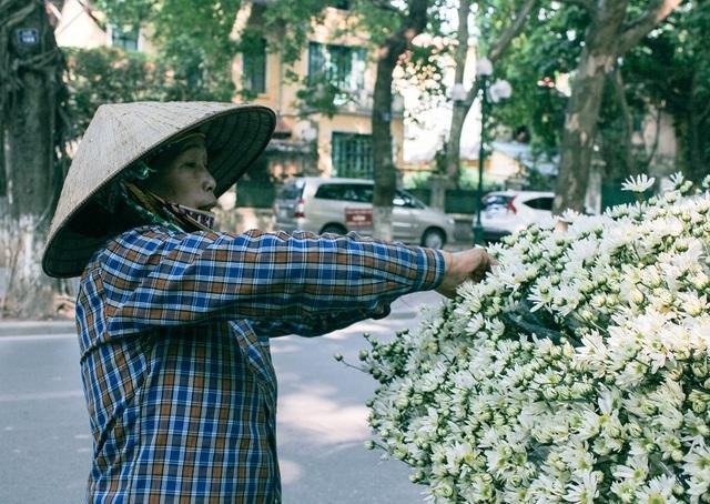 Để những bông cúc li ti luôn tươi, người bán hoa luôn tận tâm chăm sóc từng bông hoa một cách kĩ lưỡng nhất.