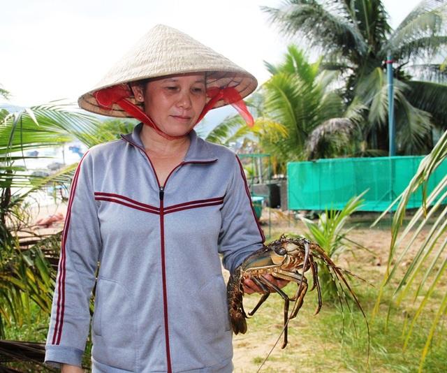 Bà Nguyễn Thị Mai Loan (49 tuổi, thôn Hòa Lợi, xã Xuân Cảnh) mếu máo vì hàng trăm con tôm hùm bất ngờ chết vì nước lũ đổ về
