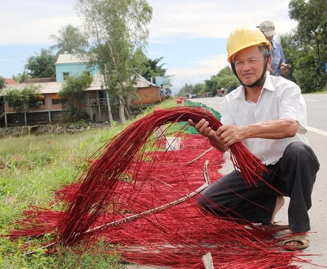 Ông Phó góp phần giữ vùng nguyên liệu cói cho làng nghề dệt chiếu xã Hoài Châu Bắc