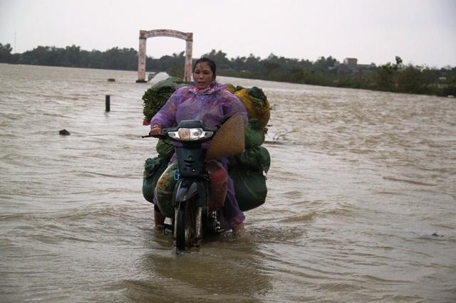 Người trông rau sạch ở xã Phước Hiệp (huyện Tuy Phước) vớt vát rau trong lũ