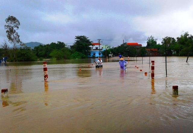 Nước lũ bất ngờ dâng trở lại khiến người nông dân tỉnh Bình Định kiệt sức