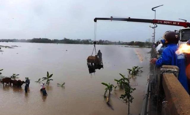 Độc chiêu dùng xe cẩu câu bò thoát dòng nước lũ ở Phú Yên
