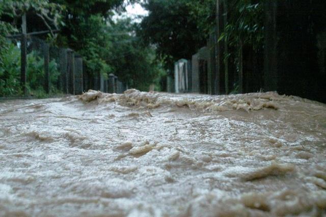 Nước cuồn cuộn chảy về phố
