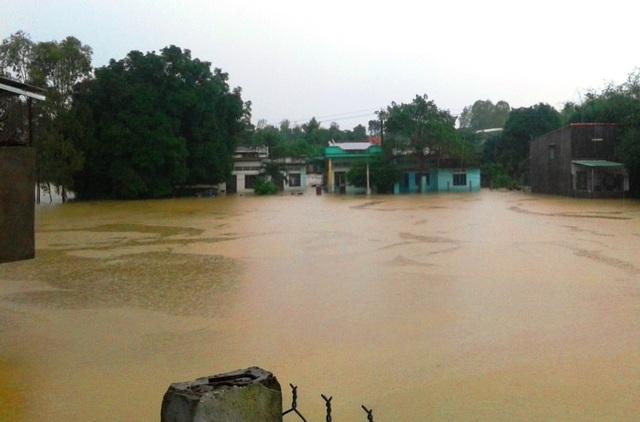 Gần như 11 huyện, thị xã, thành phố ở Bình Định đều bị ngập nước với gần 65.000 hộ dân bị ngập lụt, nhiều địa phương bị cô lập