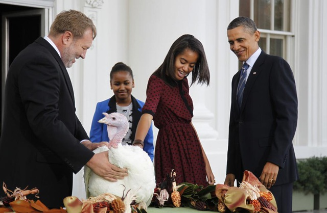 Khoảnh khắc vui vẻ của gia đình Tổng thống Obama trong lễ xá tội cho gà tây vào ngày 23/11/2011. Lễ xá tội được tổ chức với mục đích tha tội chết cho 2 con gà tây trước ngày lễ Tạ ơn tại Mỹ. Trong ngày này, các gia đình ở Mỹ sẽ chế biến ít nhất một con gà trên bàn tiệc mừng lễ Tạ ơn của họ (Ảnh: Reuters)