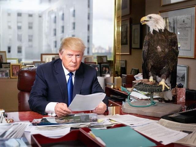 """""""Tôi muốn triển khai ý tưởng rằng ông ấy nghĩ mình là một nhà lãnh đạo tuyệt vời và là vị cứu tinh của nhân dân Mỹ. Tôi nghĩ chẳng có gì thể hiện tốt hơn ý tưởng đó bằng một con chim đại bàng - biểu tượng của nước Mỹ"""", nhiếp ảnh gia Martin Schoeller nói về bức ảnh chụp ông Trump cho tạp chí Time vào tháng 8/2015."""