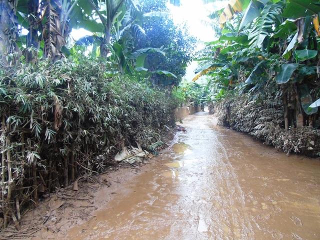 Khung cảnh hoang tàn tại những vùng quê nghèo