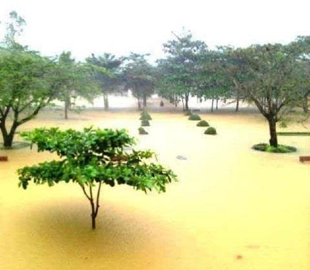 Trường Tiểu học số 1 Phúc Trạch bị ngập trong nước. (Ảnh Q.H)