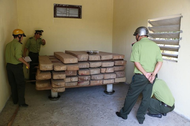 Lô gỗ không rõ nguồn gốc và không có giấy tờ hợp pháp. (Ảnh Q.N)