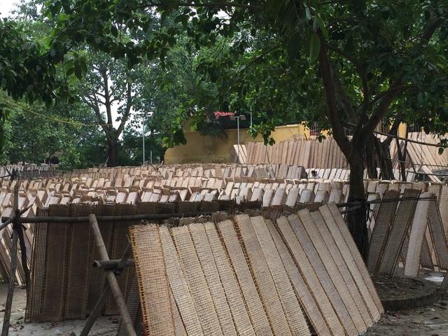 Người dân tận dụng không gian để phơi bánh đa nem, một sản phẩm truyền thống của làng.