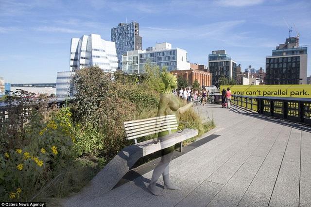Công viên High Line, New York, Mỹ.