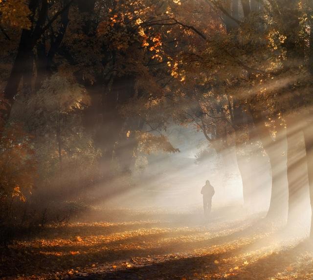 """Bộ ảnh đẹp ngoạn mục chụp ở nơi """"trái tim của mùa thu"""" - 9"""