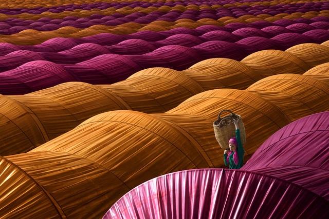"""Ở hạng mục """"Travel"""" (Ảnh du lịch), đoạt giải nhất là tác phẩm của nhiếp ảnh gia Leyla Emektar (Thổ Nhĩ Kỳ) ghi lại quang cảnh một vựa dâu tây đã được giăng kín vải che để bảo vệ những trái dâu sắp vào mùa thu hoạch."""