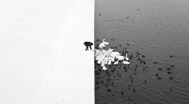 """Ở hạng mục """"Open Monochrome"""" (Ảnh đơn sắc), giải nhất thuộc về tay máy Marcin Ryczek (Philippines) với tác phẩm chụp tại Krakow, Ba Lan. Với hai nửa đối lập về màu sắc được tạo nên bởi màu trắng của tuyết và màu sẫm của làn nước mùa đông, bức ảnh như có một đường kẻ thẳng tắp."""