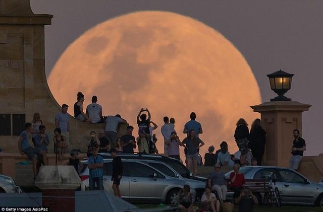 Người dân ở thành phố cảng Fremantle, Úc.