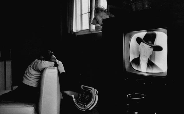 Một chú tinh tinh có tên Zippy đang ngồi chăm chú xem TV. Ảnh chụp năm 1955.