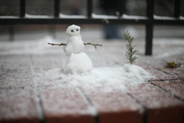 Tuyết rơi ở thành phố Portland, bang Oregon, Mỹ.