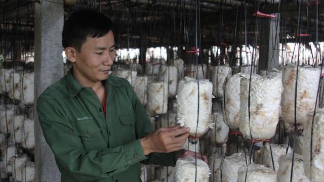 Đại diện lãnh đạo Sở NN&PTNT tỉnh Hà Tĩnh đánh giá cao mô hình trồng nấm ăn có sử dụng nước thu hồ từ lúa và xử lý rác thải. Mô hình này trong tương lai sẽ nhân rộng trên ở nhiều địa phương.