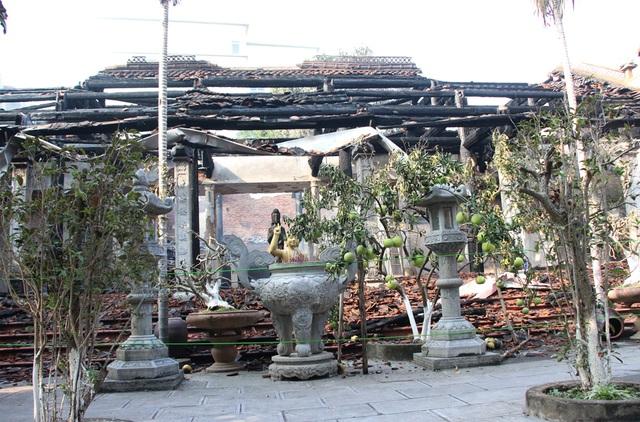 Cây cảnh cạnh khu Nhà Tổ cũng bị sức nóng của ngọn lửa làm cho cháy sém.