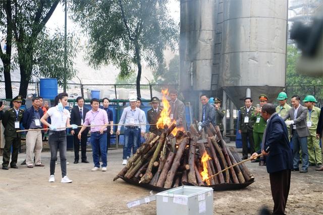 Sừng tê giác và một số mẫu xương hổ, xương gấu được tiêu hủy bằng phương pháp đốt.