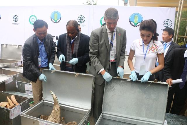 Thứ trưởng Bộ NN&PTNT kiêm Tổng Cục trưởng Tổng Cục Lâm nghiệp Hà Công Tuấn (ngoài cùng bìa trái) và Á hậu Huyền My (bìa phải) cùng đại diện các tổ chức, cá nhân nước ngoài kiểm tra các mẫu vật.