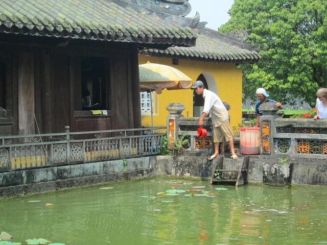 Cán bộ Phòng Cảnh quan Môi trường xử lý nước ở hồ trong Cung Diên Thọ